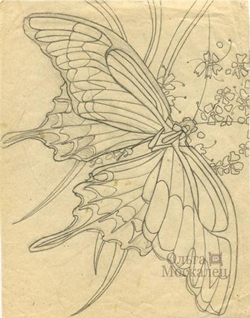 эскизы бабочек